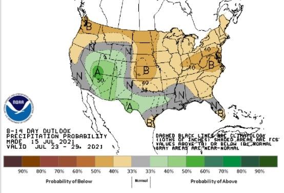 Chuvas EUA 8 a 14 dias