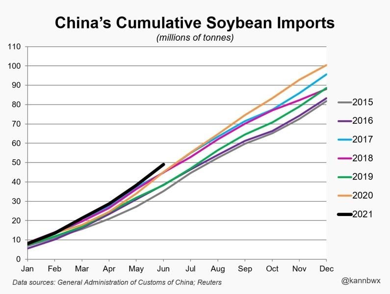 Importações Soja China Ano
